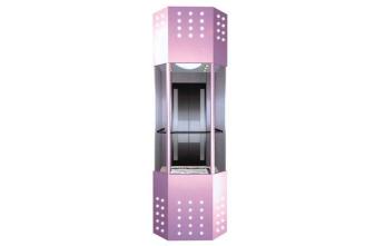 粉红色观光别墅电梯-适合家用女生使用